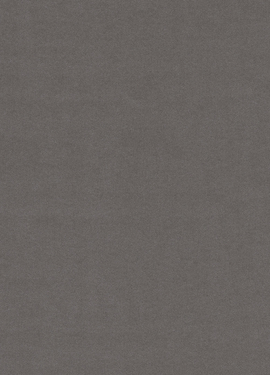 Black & Light 356189