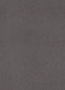 Black & Light 356195
