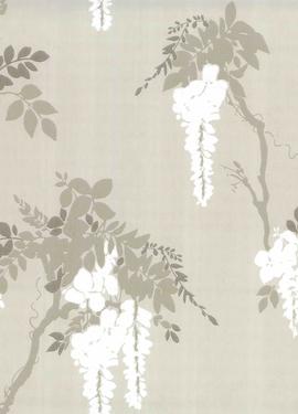 Camellia s 1703-109-01