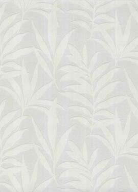 Camellia s 1703-113-01