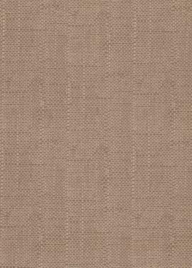 Camellia s 1703-115-02