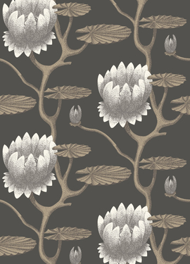 Contemporary Restyled Cole&Son 95/4026