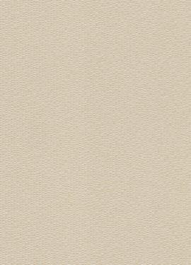 Jaipur 227658