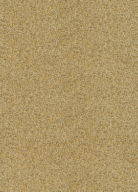 Rice II 383582