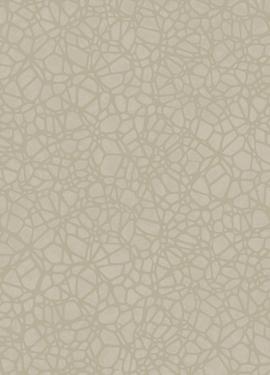Sahara 100619
