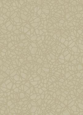 Sahara 100623