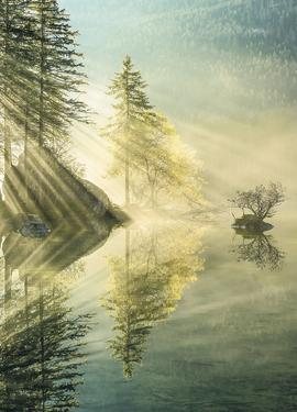 Stefan Hefele by SH018-VD2