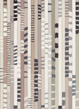 Stripes + 377214