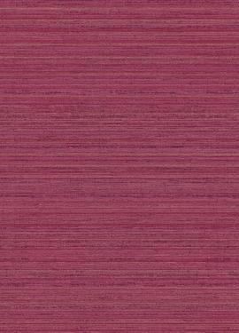 Sundari 375145