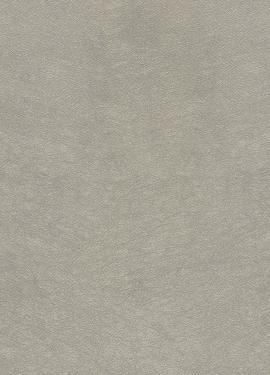 Topaz  smart paper 394502