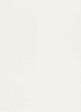 Wallton Podium 0,53x10,05 m 342307